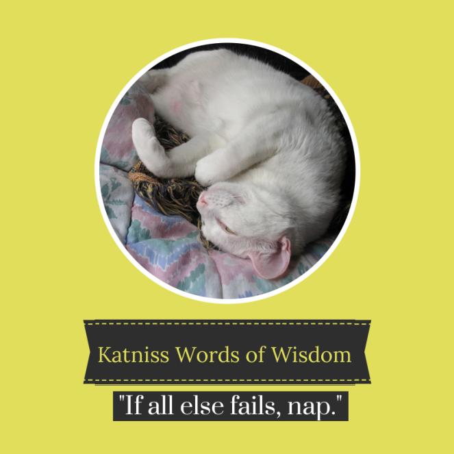 Katniss Words of Wisdom